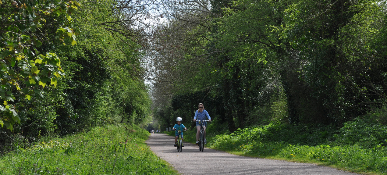 Parent and Child riding bikes on a cycle path