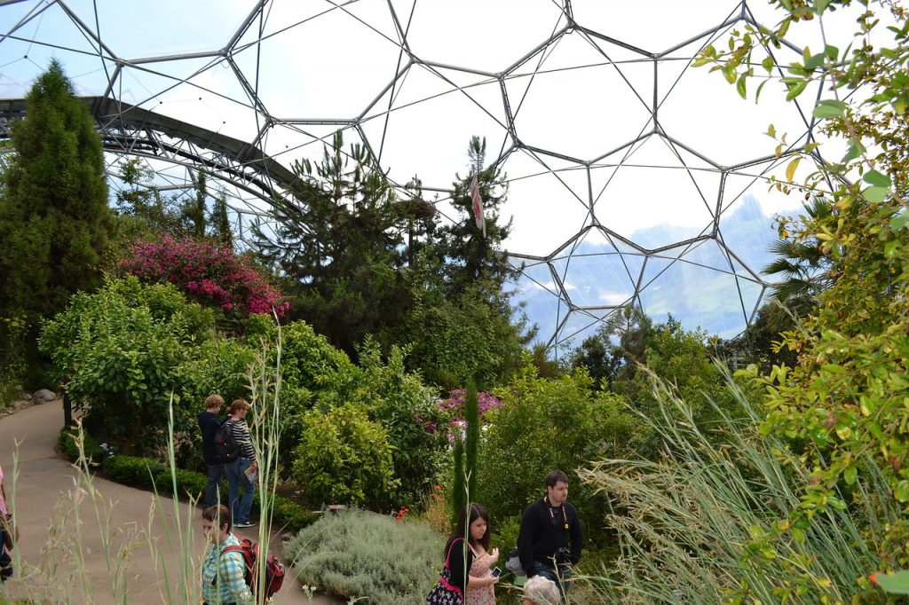 The inside of an Eden Project biome