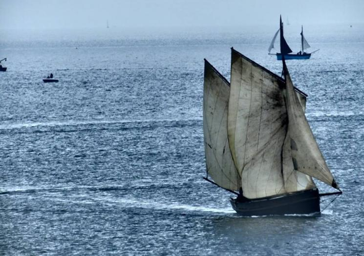 Lugger at Looe Lugger Regatta
