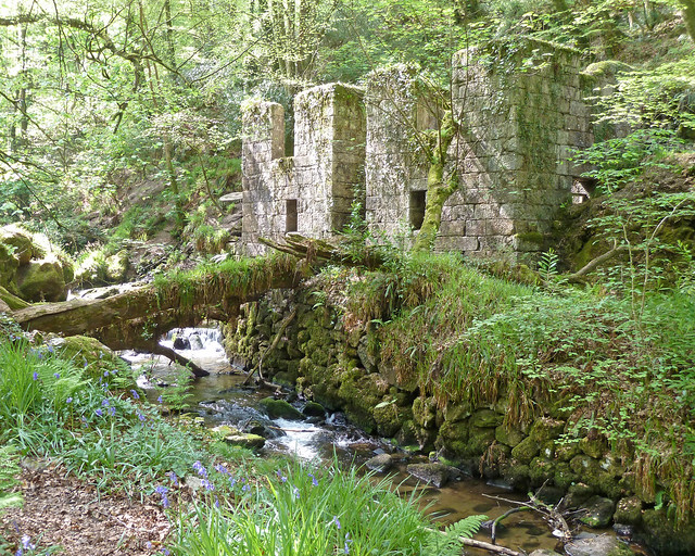 Abandoned Gunpowder Factory, Kennall Vale Wildlife Reserve, Cornwall