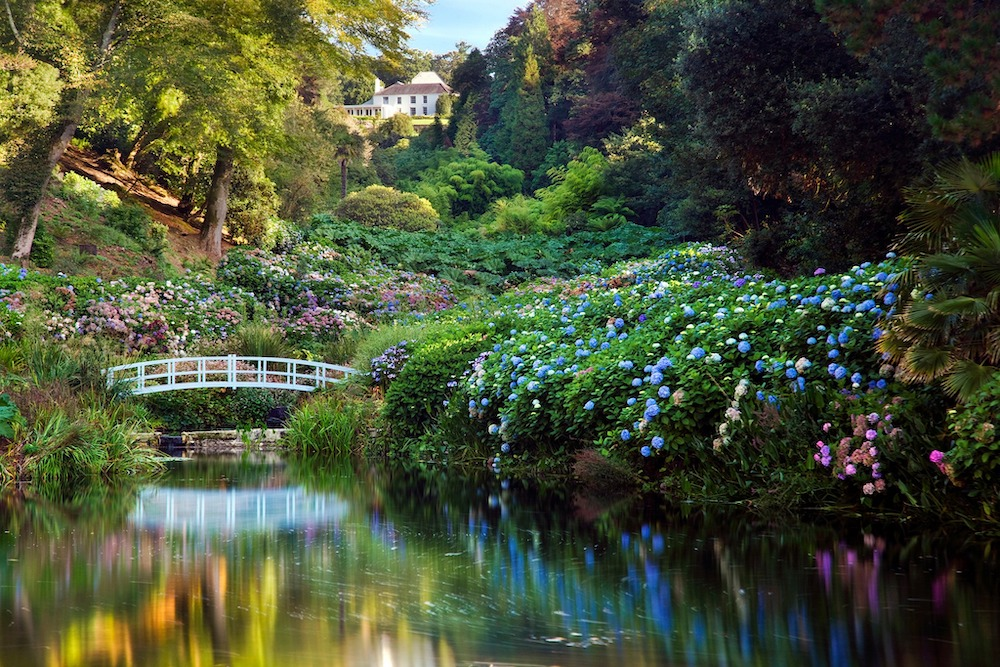 A beautiful view of a bridge over a river at Trebah Gardens in Falmouth, Cornwall