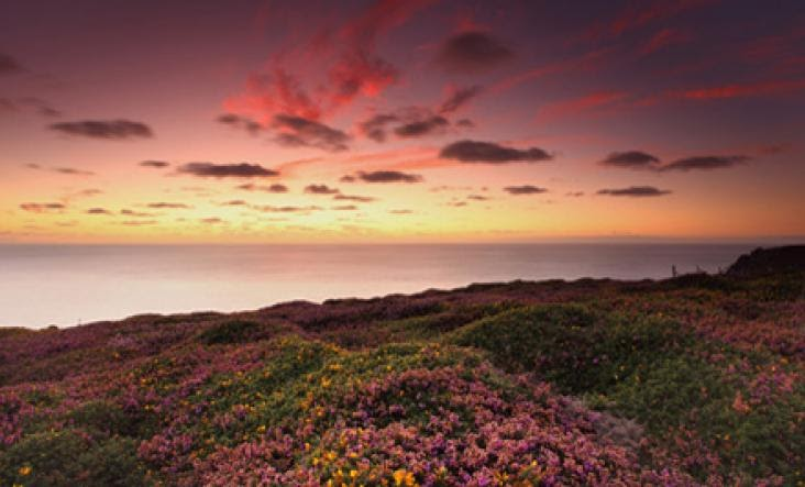 Pink skies at sunset over a Cornish headland