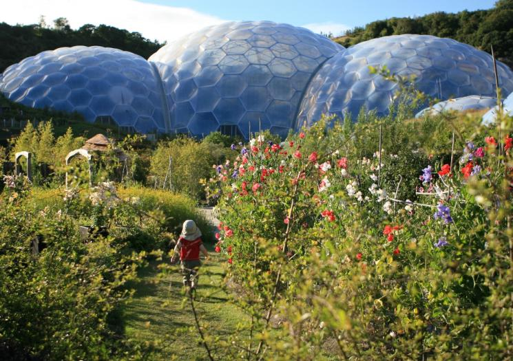 A child walking through the outdoor garden at the Eden Project